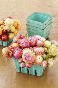 berry_basket_flowers