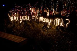 wedding-proposal-lights